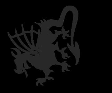 1561227930_dragonrouter3