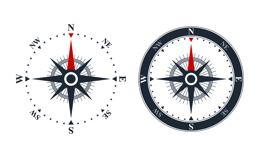 1590264601 compass roses