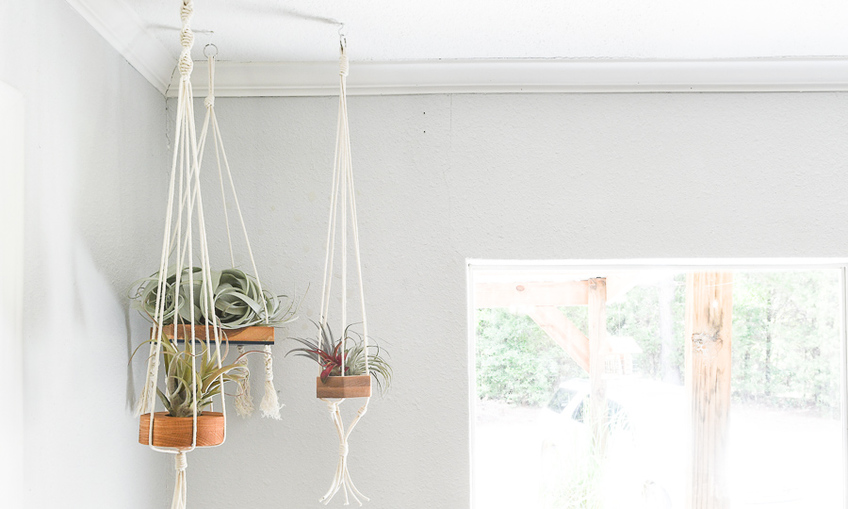 1598563162 hanging air plant holders xcarve 1