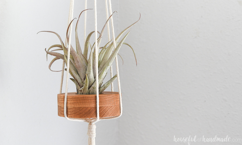 1598563179 hanging air plant holders xcarve 2