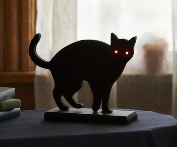 1447090577 cat env  0029
