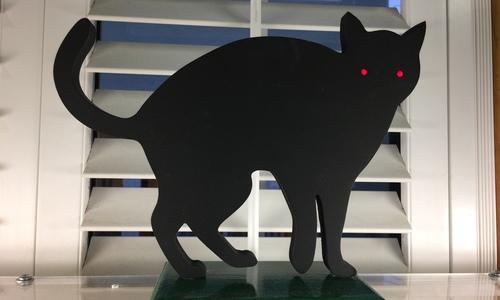 1487556575 black cat
