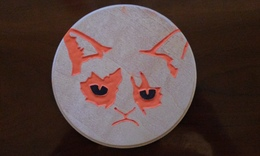 Grumpy%20cat