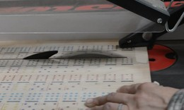 Cutting dominio strips moment