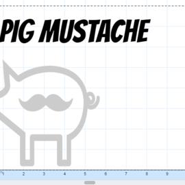 Pig mustache