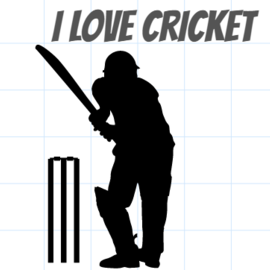 Cricket pic